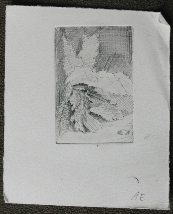 State 2: I simply worked on the print with graphite to have a better sense of where I wanted to take it next.