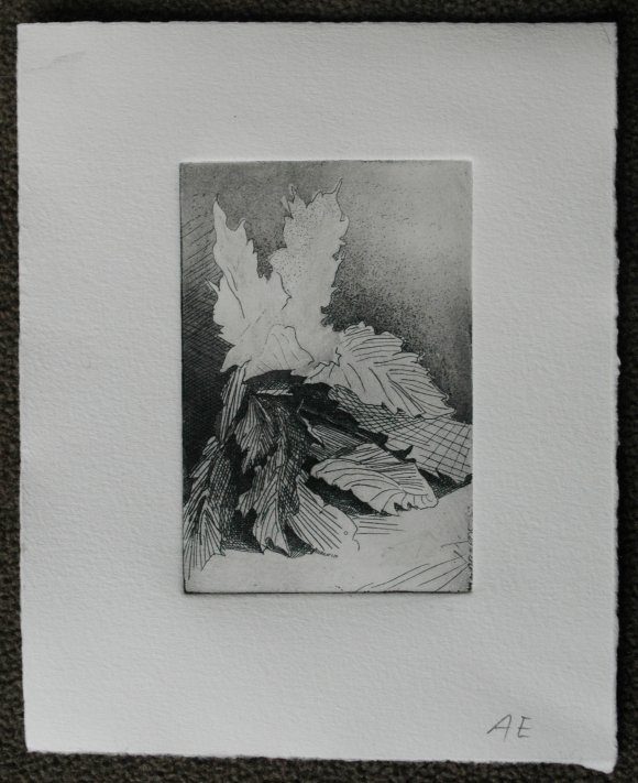 State 4: This plate has a few changes made on it. I removed some of the aquatint with a burnishing tool and steel wool to break up the evenness of the tone and achieve a sense of light. I also etched stippled points to have a greater variety of marks.