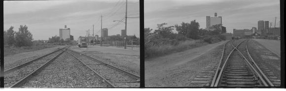 Buffalo rail