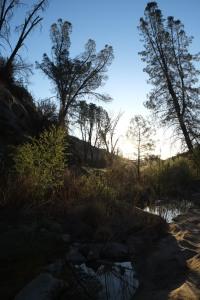 The scenery around White Ledge.